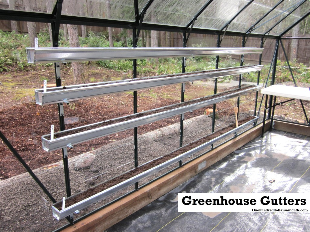 How To Grow Food In A Greenhouse Update On Newly Planted