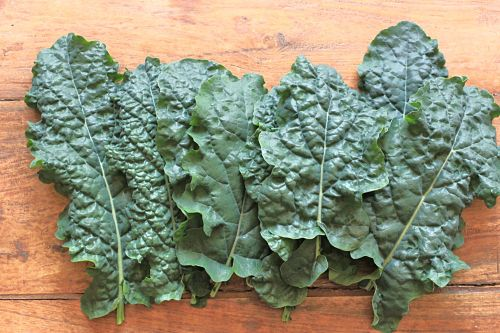 picture of kale