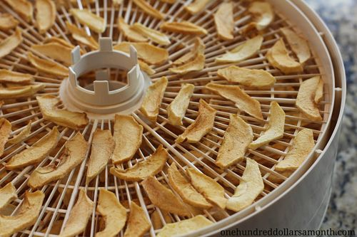 Food Dehydrator Recipes Apples