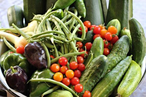 Kids Vegetable Garden Raised Beds