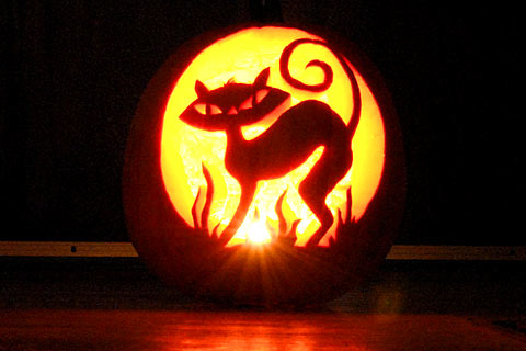 Unique pumpkin carving ideas one hundred dollars a month Awesome pumpkin designs