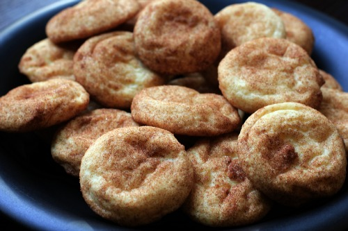 25 Days Of Christmas Cookies Snickerdoodles Recipe One Hundred