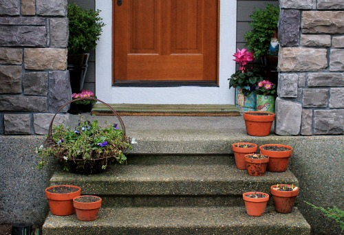 Mavis garden blog front porch flowers one hundred for Front porch pantry coupon