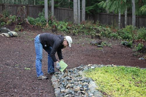 Mavis Garden Blog   Making Rock Borders In The Garden   One Hundred Dollars  A Month