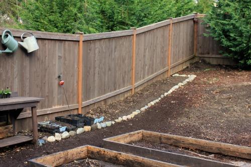 garden against fence