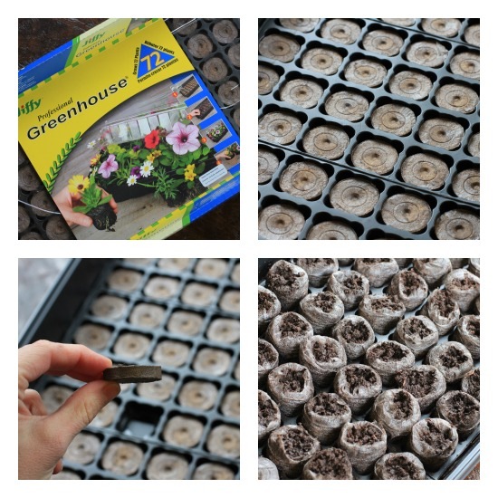 jiffy peat pots greenhouse