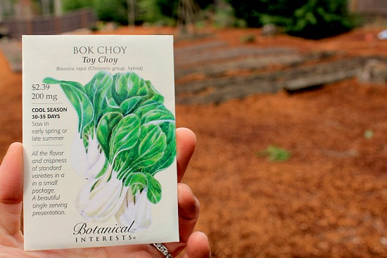 bok choy seed packet