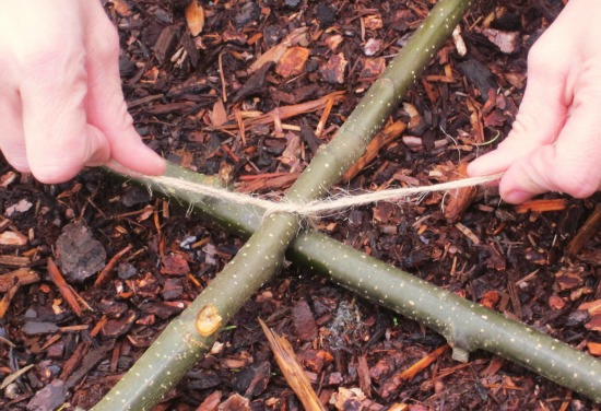 sticks and twine