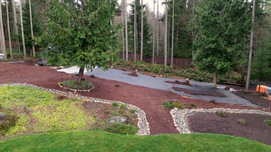 Mavis Butterfield | Backyard Garden Plot Pictures - Week ... on Wooded Backyard Ideas id=84832