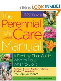 Perennial plant care