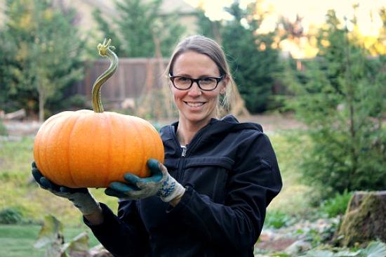 mavis-butterfield pumpkin