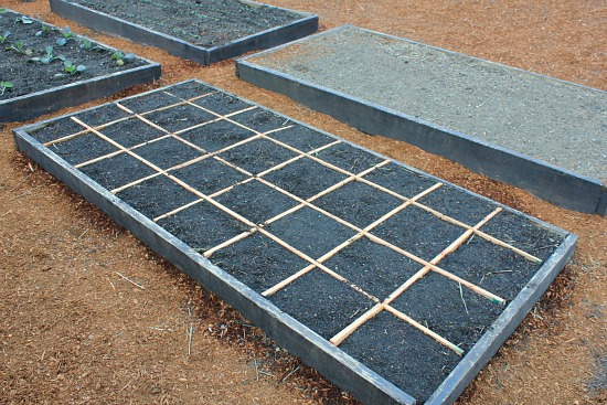 square foot gardening building a grid
