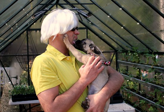 greenhouse gardening puggle andy