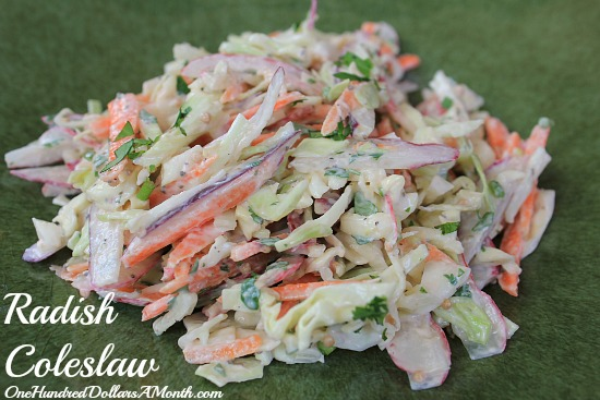 radish coleslaw recipe