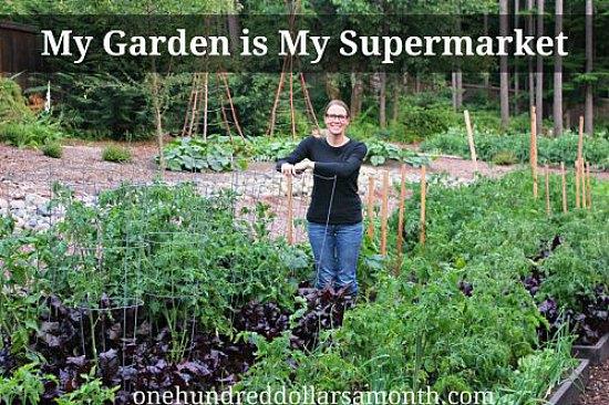 mavis-garden-blog_opt2