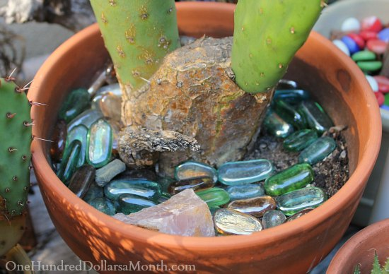 Container Garden Ideas Colored Glass