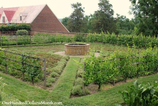 Mount Vernon Garden
