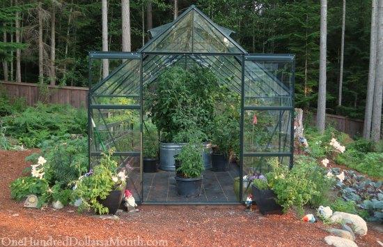 Image Result For Backyard Vegetable Garden Videos