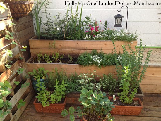 small space container garden