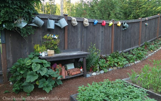 Mavis Butterfield Backyard Garden Plot Pictures Week