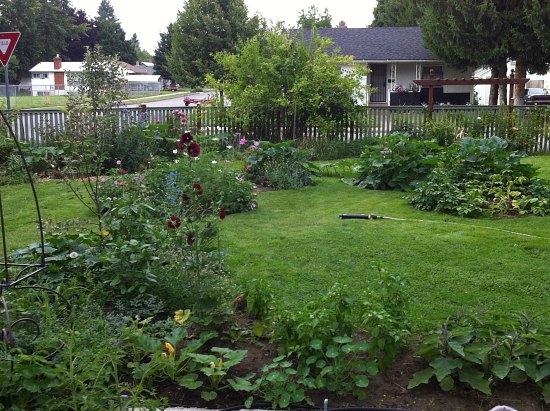 Garden Photos From Coeur D Alene Idaho One Hundred Dollars A Month