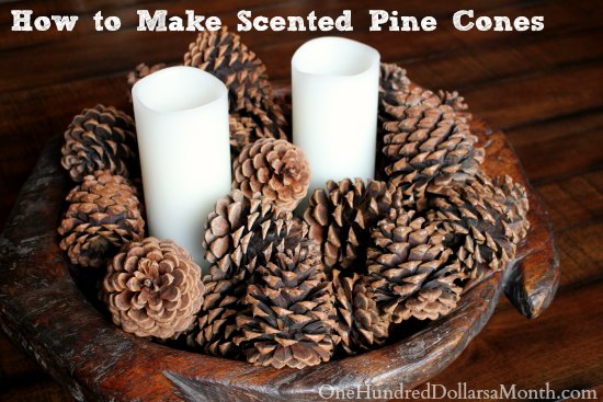 How To Make Scented Pine Cones One Hundred Dollars A Month