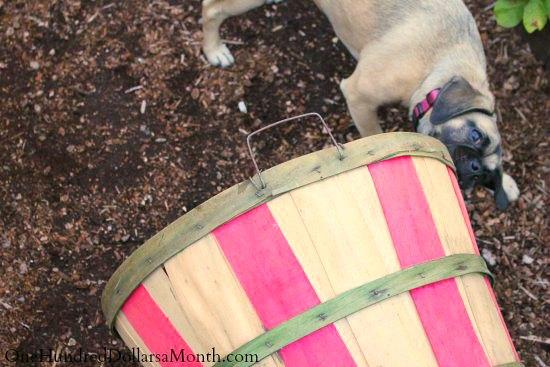 bushel basket with stripes