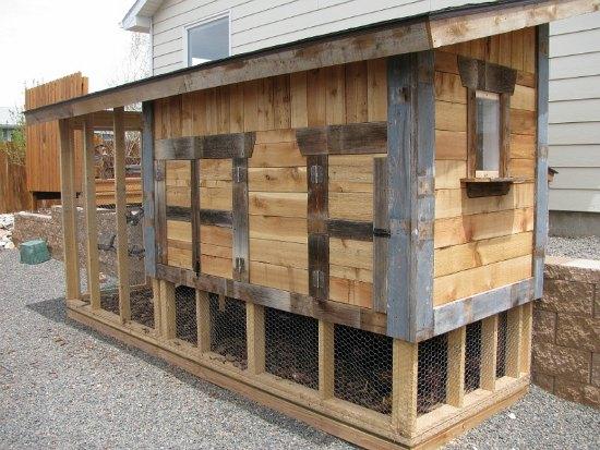 cool-chicken-coop-designs