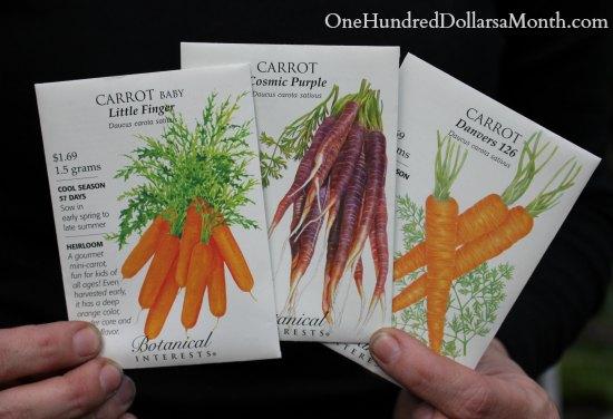 purple carrot seeds botanical interests