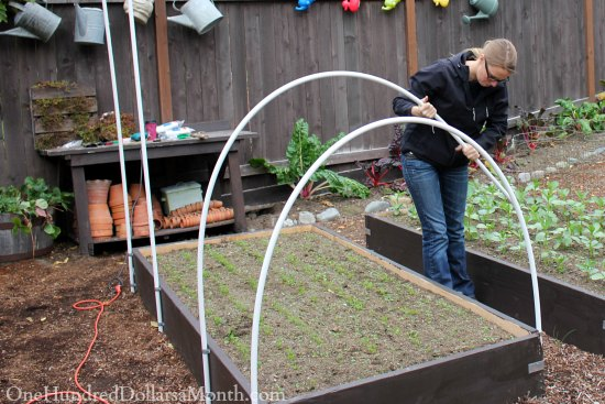 how to build a small poly tunnel one hundred dollars a month. Black Bedroom Furniture Sets. Home Design Ideas