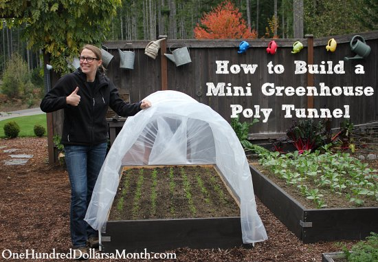 How to build a small poly tunnel one hundred dollars a month for Materials to make a greenhouse