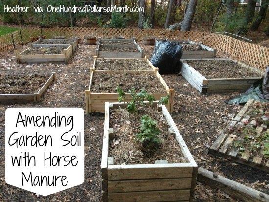 Horse Manure For Garden Beds