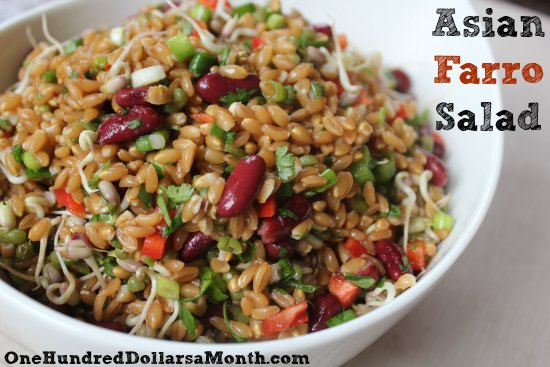 Vegan Friendly Recipes – Asian Farro Salad