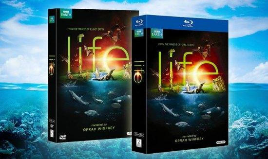 life dvd set
