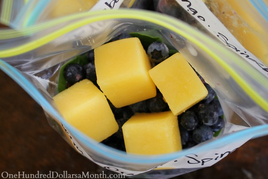Preventing Food Waste - Freeze Extra Juice and Make Smoothies