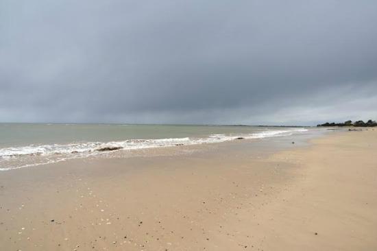 tasmania beach