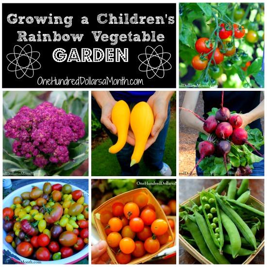 Growing-a-Rainbow-Vegetable-Garden-