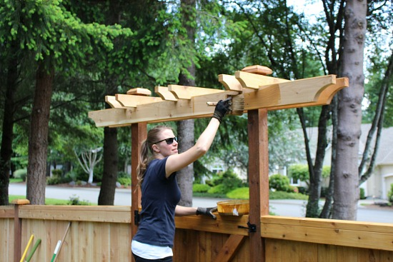 staining a trellis