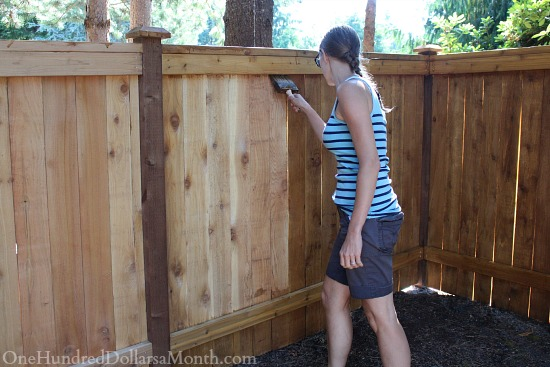 staining fence