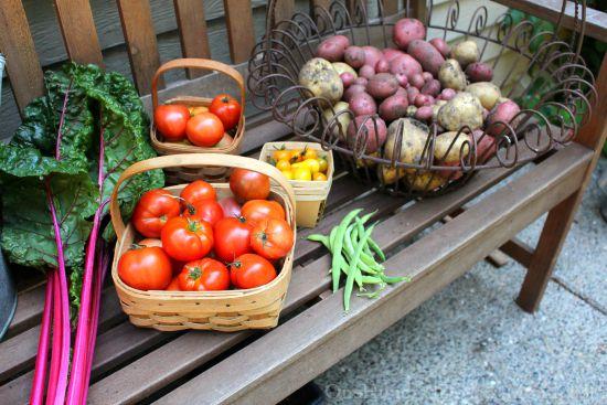 homegrown vegetables