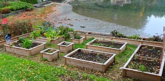 garden-boxes-in-fall