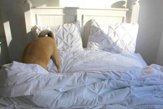 lucy-puggle-white-bedding