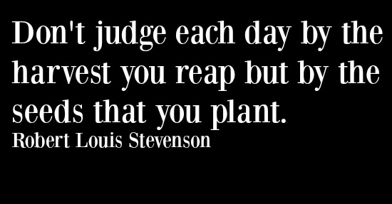 dont-judge-each-day-by-the-harvest-you-reap-but-by-the-seeds-that-you-plant-robert-louis-stevenson